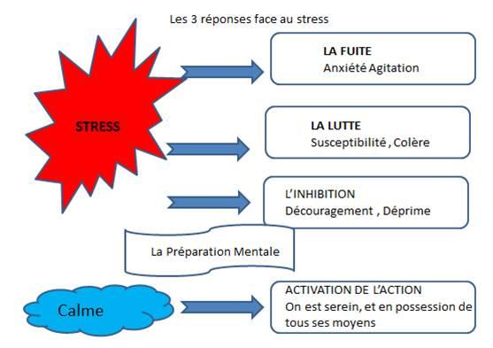 Réponses face au stress_ACCELPERF
